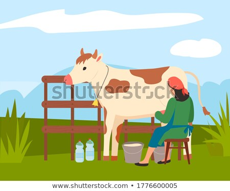 Woman farmer near cow on nature landscape. Milkmaid is working at countryside milking cow in field Stock photo © robuart
