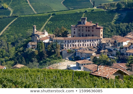 Falletti di Barolo Castle, Barolo, Piedmont, Italy Stock photo © phbcz