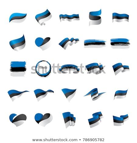 Estonia · eu · flagi · malowany · pęknięty · konkretnych - zdjęcia stock © maxmitzu