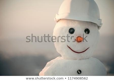 Photo stock: Bonhomme · de · neige · gel · écharpe · carotte · nez · hiver