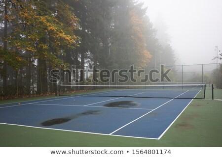 テニス · 日没 · 実例 · 女の子 · 演奏 · 少女 - ストックフォト © capturelight