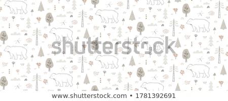 vector hand drawn bear Stock photo © frescomovie