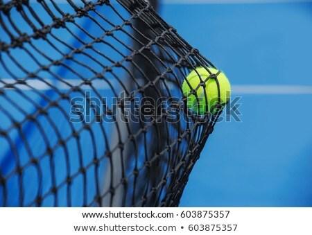 Stock fotó: Teniszlabda · net · sport · egészség · háttér · zöld