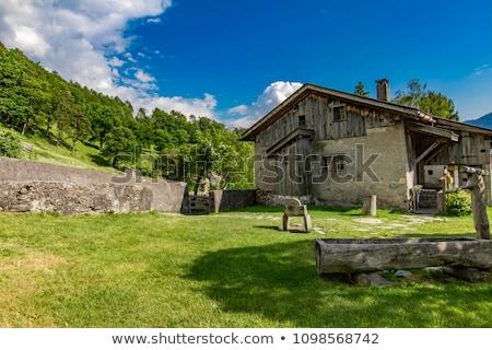 Suíça belo natureza céu madeira verão Foto stock © boggy