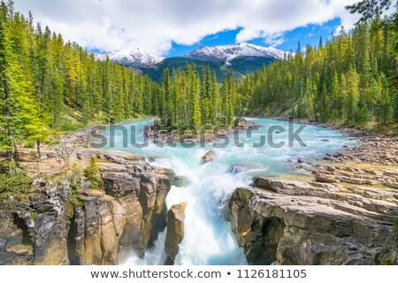Sunwapta Falls in Jasper National Park Stock photo © benkrut