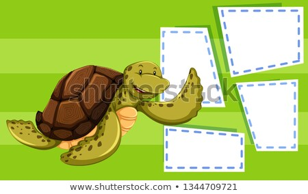 Zee schildpad nota illustratie textuur achtergrond Stockfoto © bluering