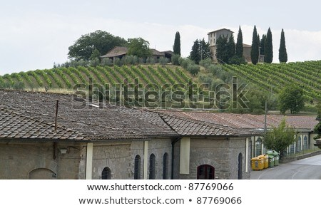 around San Regolo in Chianti Stock photo © prill