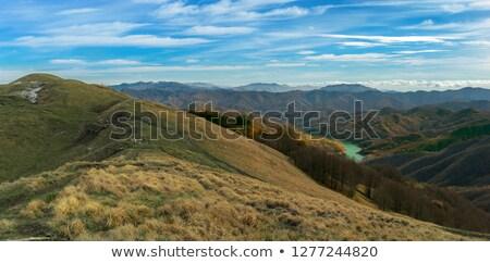 Monte Antola, Liguria, Italy Stock photo © Antonio-S