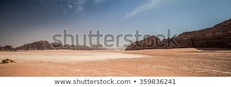 Flat desert landscape Stock photo © ajlber
