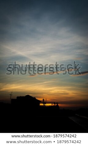 cacto · dourado · pôr · do · sol · blue · sky · céu · sol - foto stock © meinzahn