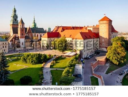 katedrális · királyi · kastély · Krakkó · Lengyelország · égbolt - stock fotó © joyr
