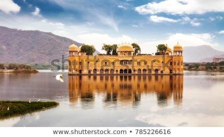 A beautiful view of jal mahal in Jaipur Stock photo © ziprashantzi
