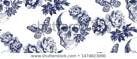 cráneo · revólver · sombrero · de · vaquero · dos · armas - foto stock © vectomart