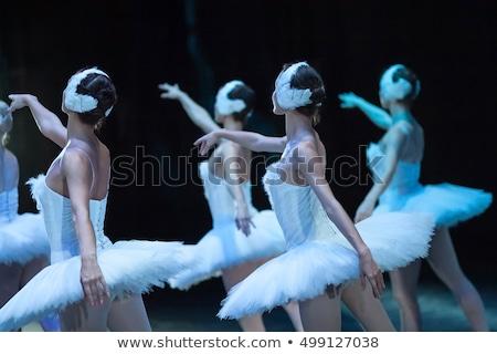 Zwaan meer illustratie fase prestaties dansen Stockfoto © Dazdraperma