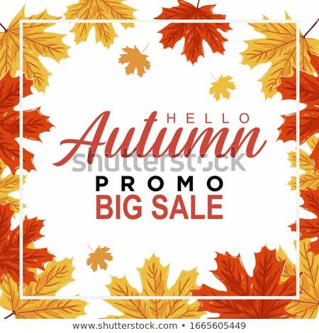 осень предлагать продажи Баннеры осень Сток-фото © marinini