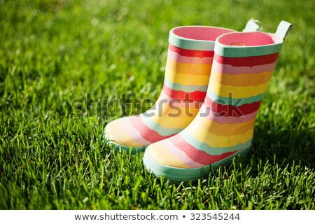 gumboots with grass stock photo © adamson