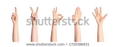manos · establecer · diferente · gestos · aislado · blanco - foto stock © marysan