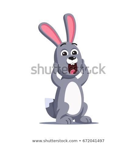 Przerażony mały królik cartoon ilustracja patrząc Zdjęcia stock © cthoman