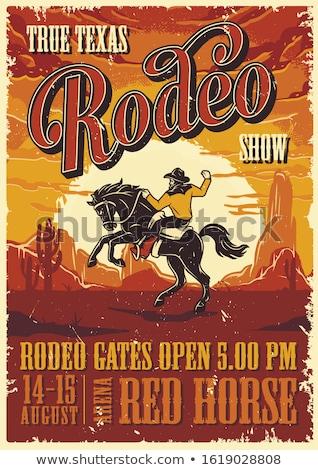 Foto stock: Rodeio · cartaz · Texas · EUA · bandeira · projeto