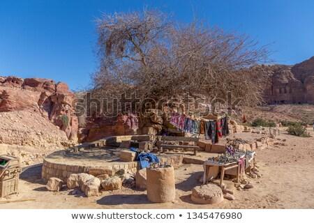 Rua Jordânia antigo cidade cidade paisagem Foto stock © hitdelight