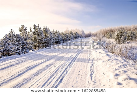 winter country road stock photo © 5xinc