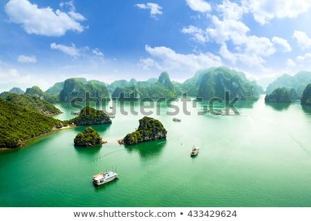 Naplemente Vietnam nyár nap tájkép fény Stock fotó © bloodua
