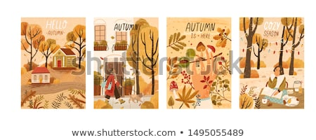 Woman gathering chestnuts Stock photo © photography33