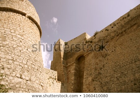 Edad fortaleza pared fragmento entrada construcción Foto stock © vrvalerian