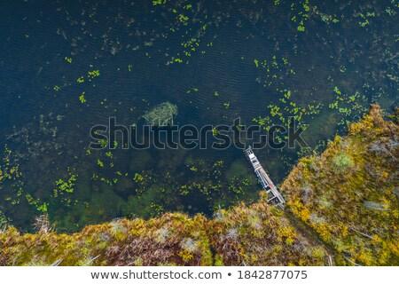 raide · au-dessus · alpine · lac · parc · nature - photo stock © artjazz