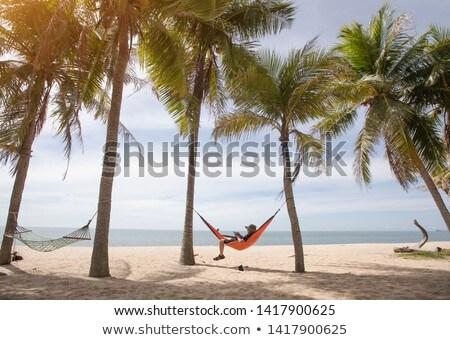 Frau schlafen Hängematte Strand bikini Stock foto © AndreyPopov