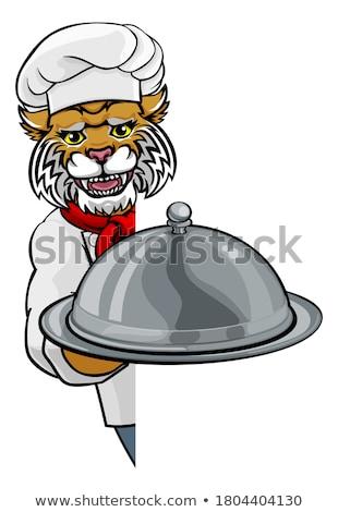 Vadmacska szakács kabala rajzfilmfigura tart ezüst Stock fotó © Krisdog