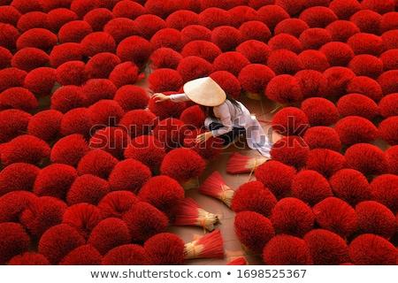 ベトナム パノラマ 夏 日 建物 市 ストックフォト © bloodua