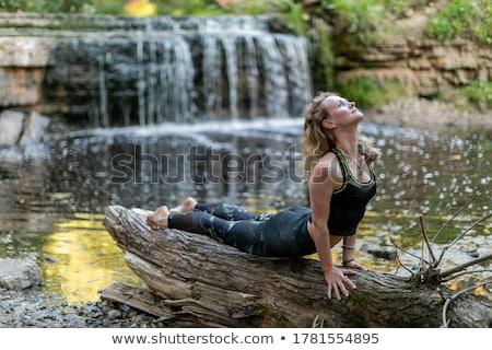 женщину йога дерево создают водопада баланса Сток-фото © dmitry_rukhlenko