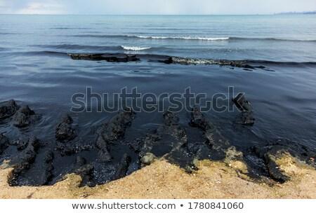 Oil pollution Stock photo © ia_64
