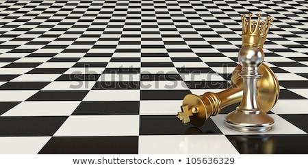 Optical illusion against silver Stock photo © shawlinmohd