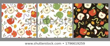 maçã · verme · desenho · animado · ilustração · engraçado · fruto - foto stock © adrian_n