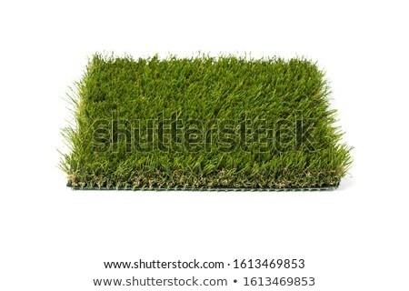 Bölüm yapay çim beyaz yeşil Stok fotoğraf © feverpitch