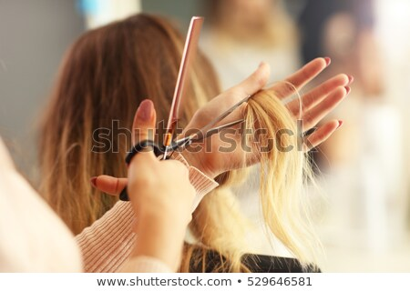 Female hairdresser cutting hair of cheerful woman Stock photo © dashapetrenko