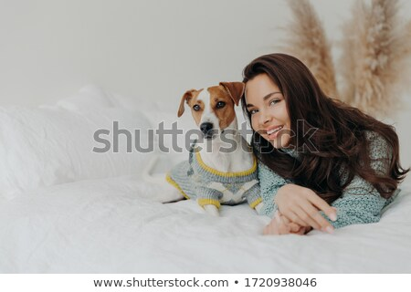 Лучшие друзья Ложь Джек-Рассел терьер собака Сток-фото © vkstudio