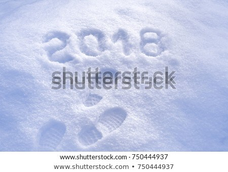 Stock photo: snowfield in winter