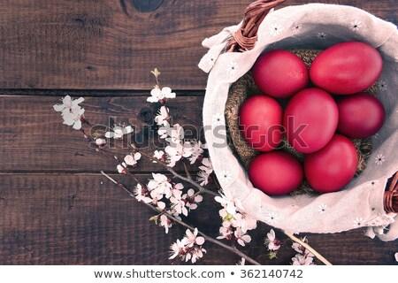 red egg stock photo © devon