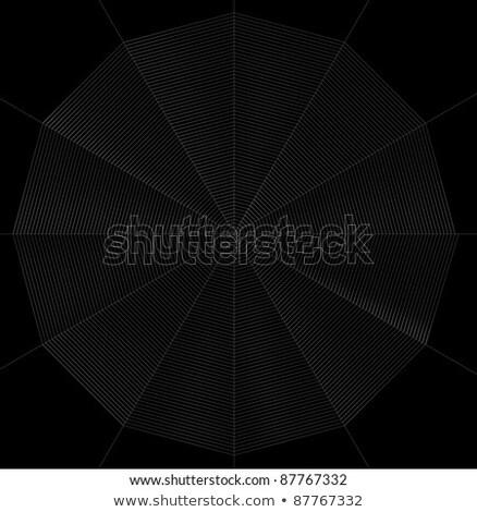 frontal spiderweb illustration Stock photo © prill