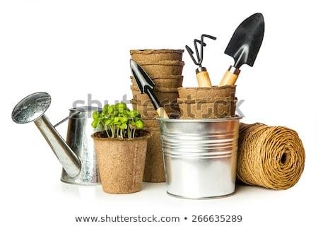 garden tools isolated stock photo © shutswis