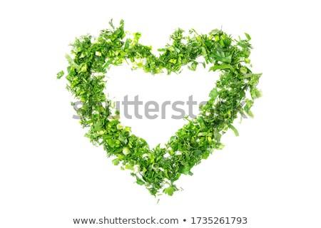 a heart of herb stock photo © armin_burkhardt