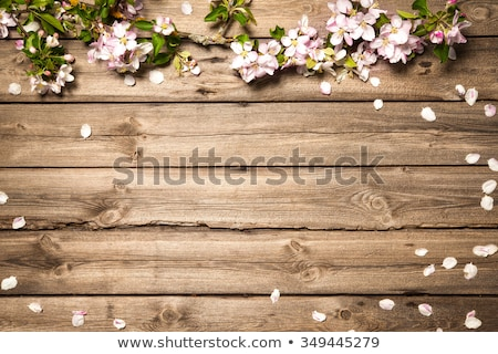 Branch with apples on a wooden board Stock photo © user_11224430
