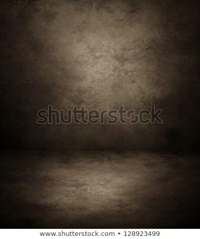 Gray concrete wall far Stock photo © bobkeenan