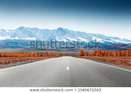 Republiek weg bergen siberië Rusland een Stockfoto © olira