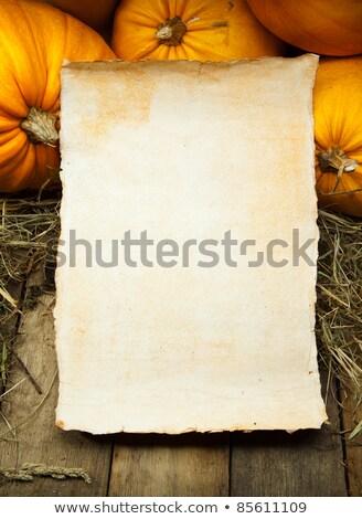 Branco papel folha abóbora halloween Foto stock © Voysla