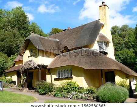 Gyönyörű tető kunyhó falu épület tájkép Stock fotó © chris2766