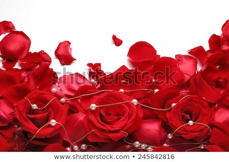 Wenskaart Rood sieraden rozen goud Stockfoto © blackmoon979